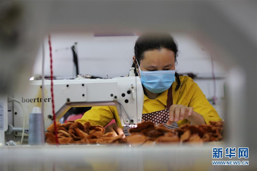 #(社会)(4)贵州锦屏:发展扶贫车间 助力贫困人口家门口就业