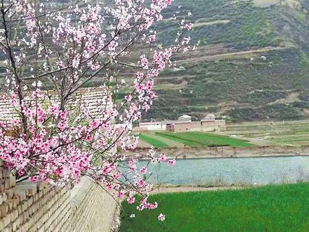美颜值 增内涵——定西渭源县峡城乡全力推进美丽乡村建设侧记