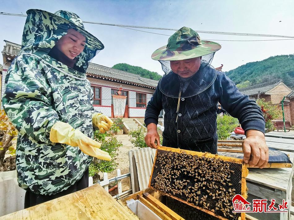 """养蜂成了麦积红崖村村民脱贫的""""甜蜜的事业"""""""