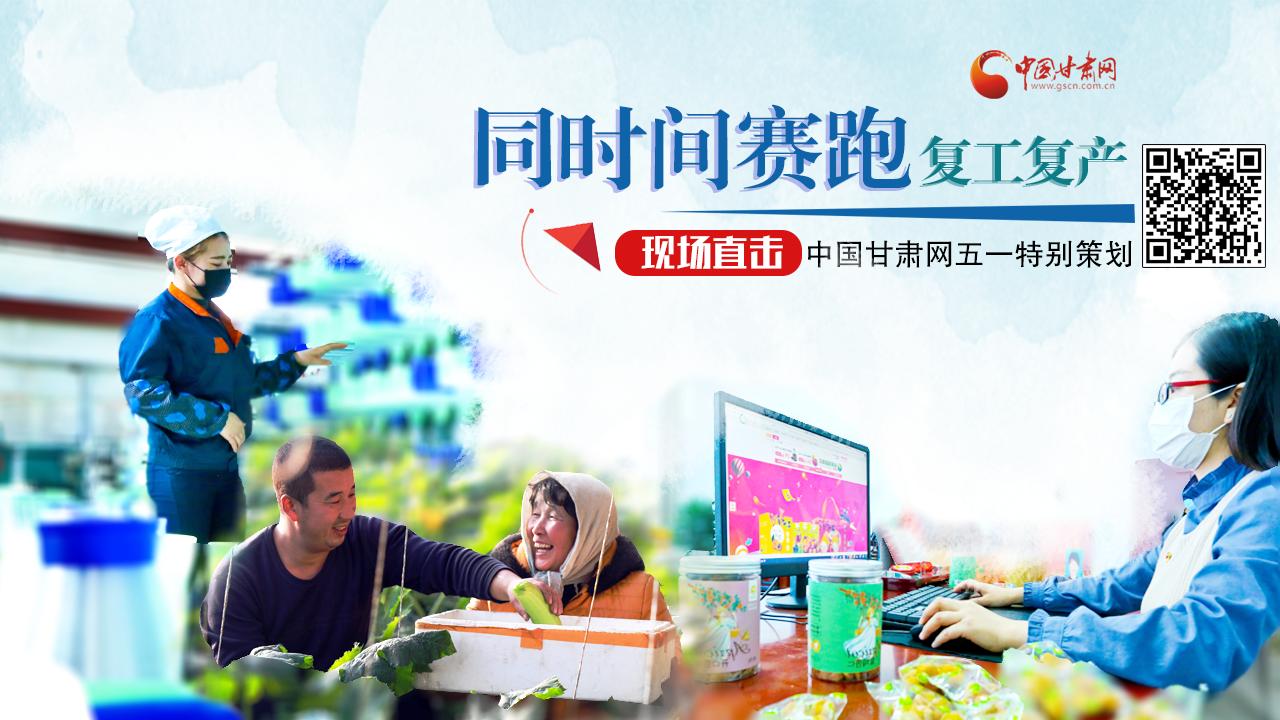 同时间赛跑 复工复产现场直击 ——中国甘肃网五一特别策划