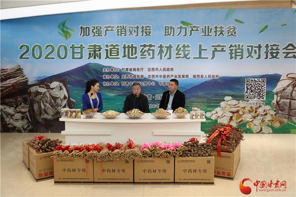 2020甘肃道地药材线上产销对接会在定西首阳成功举办(图)