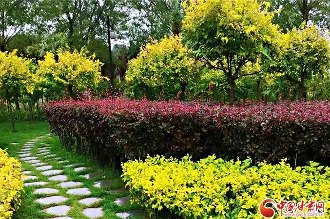 """兰州九州台牡丹园布设花景迎""""五一""""(图)"""