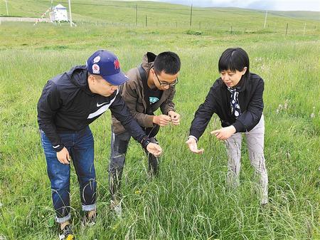 【代表委员履职故事】马晖玲代表:为绿色发展献计献策