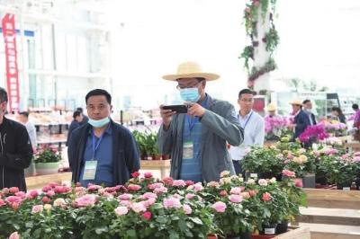 甘肃省高标准农田建设现场推进会走进新区300名农业代表观摩新区农田建设