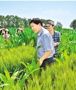柴强:推动绿色农业可持续发展
