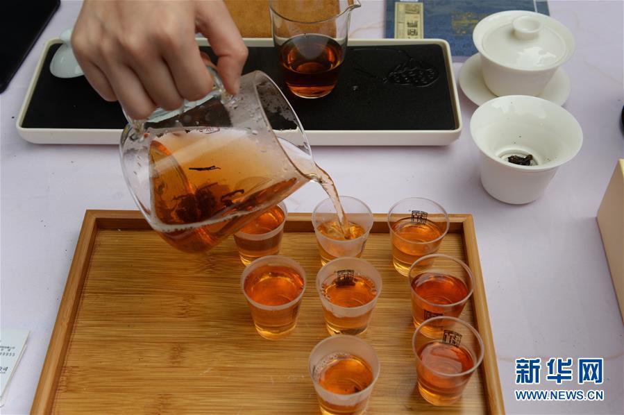 (社会)(5)长沙:国际茶日品茶香