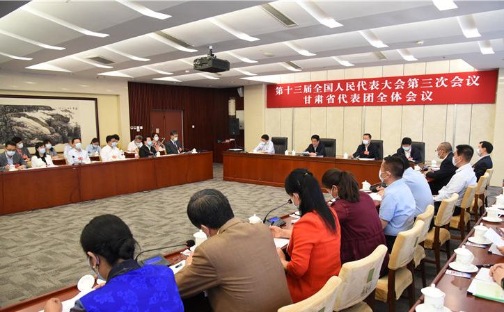 十三届全国人大三次会议甘肃代表团举行全体会议 推选林铎为代表团团长