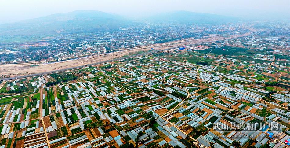 【为民情怀】武山:加快促进产业升级 实现县域经济发展与民生福祉互动共赢