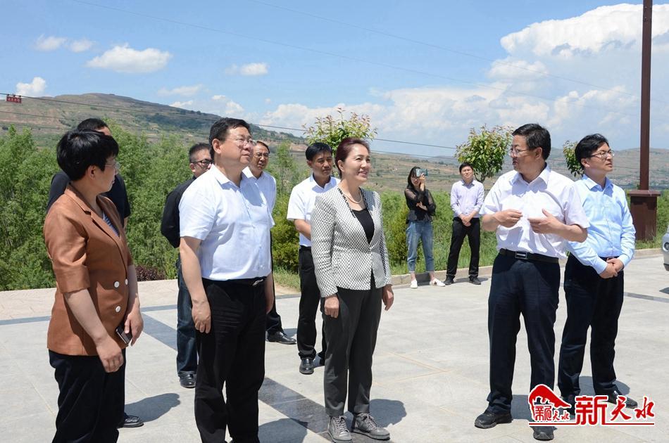 陈青在天水调研2020年公祭伏羲大典筹备工作