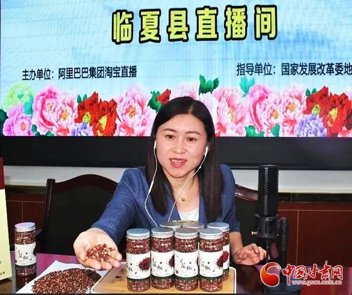 甘肃临夏县:副县长直播带货 助销农特产品(图)