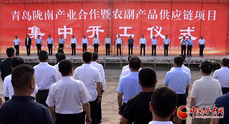 青岛陇南产业合作暨农副产品供应链项目在武都集中开工 孙伟王清宪出席(图)