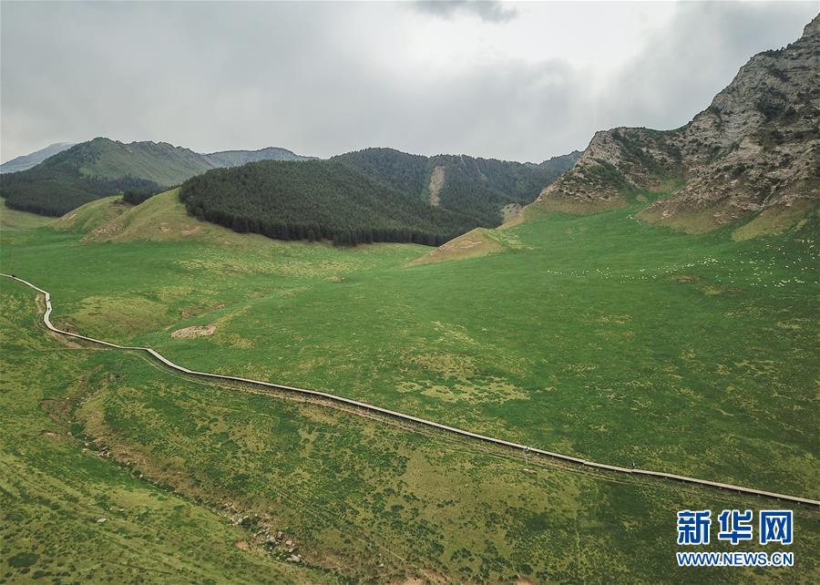 (美丽中国)(1)祁连山下冰沟河 水草丰茂美如画