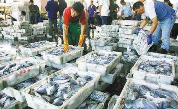 兰州高新区紧急检查水产品交易场所