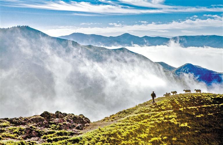 甘肃旅游丨关山云海