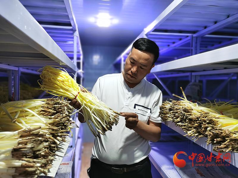 甘肃民勤:以科技创新引领智慧农业