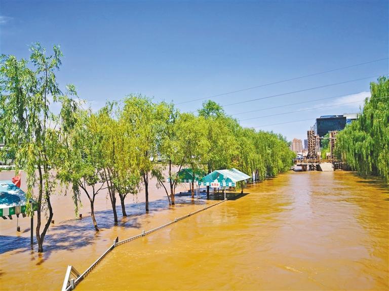 黄河涨水部分茶摊停业银滩湿地公园封闭栈道