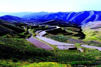 榆中县聚焦重点全力推进脱贫攻坚收官战