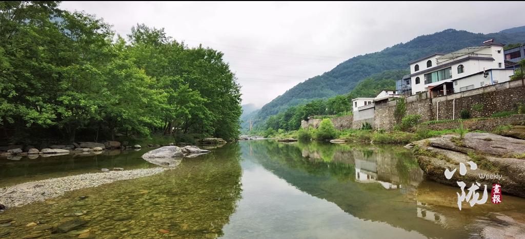 【小陇画报・95期】康县:来阳坝