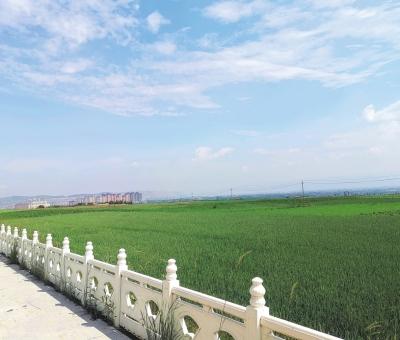 """榆中县城关镇东湾村:乡村旅游成为脱贫致富""""金钥匙"""""""