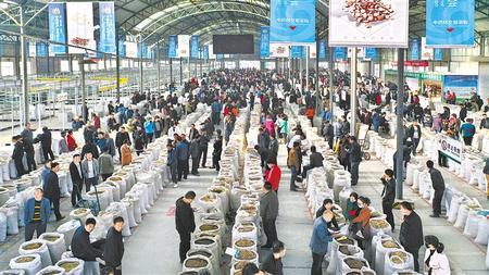 创新机制 激发活力——定西陇西县党建引领助力脱贫攻坚