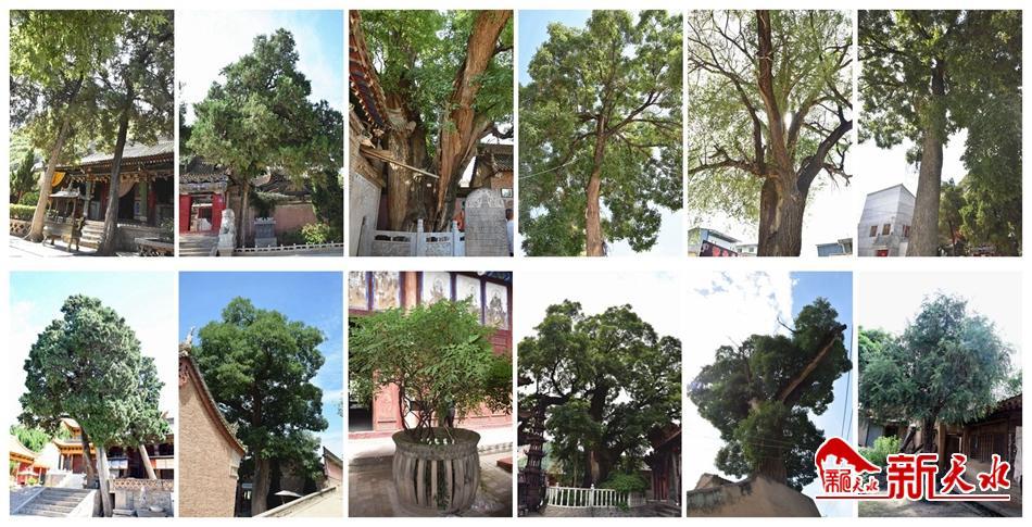 http://www.lzhmzz.com/lanzhoufangchan/116657.html