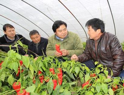 """兰州市农业科技人员""""三下乡""""为农民开展技术培训"""