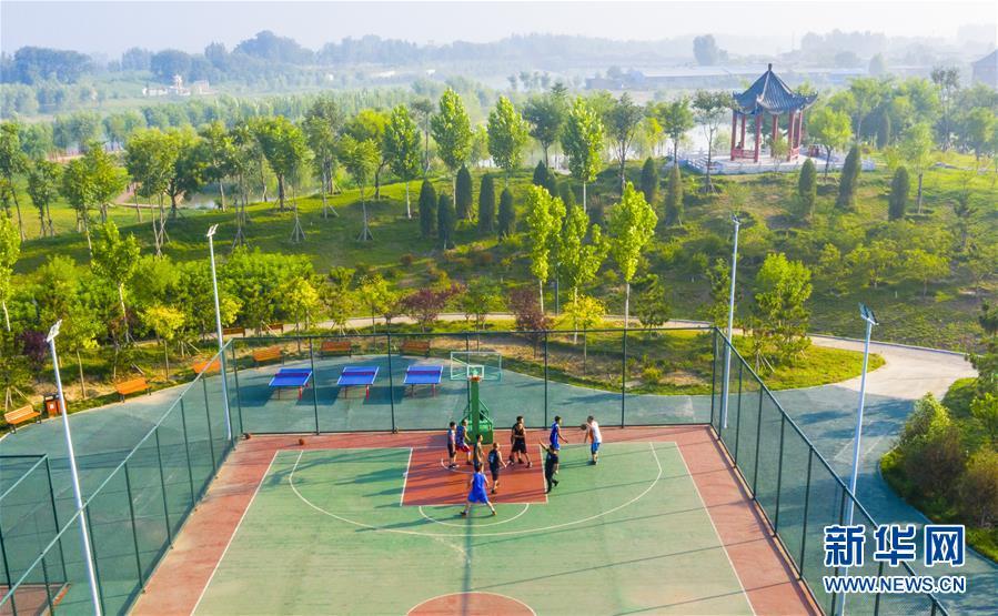 (环境)(3)河北武邑:旧河道变身生态公园
