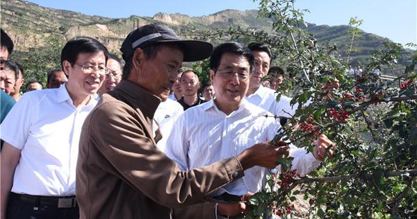全国产业扶贫工作推进会在陇南召开