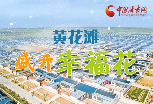 长图|武威:黄花滩盛开幸福花
