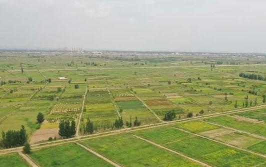 兰州市将新建25万亩以上高标准农田