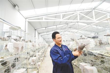 凝心聚力 并肩作战——天津市蓟州区与古浪县东西部扶贫协作工作纪实