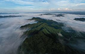 湖北利川:云海似画卷