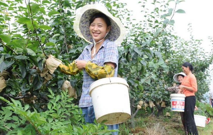 兰州市五项措施扶持农民工返乡创业