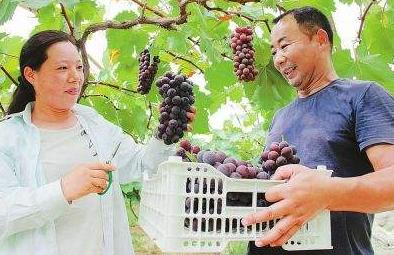 兰州市出台五项措施扶持农民工返乡创业