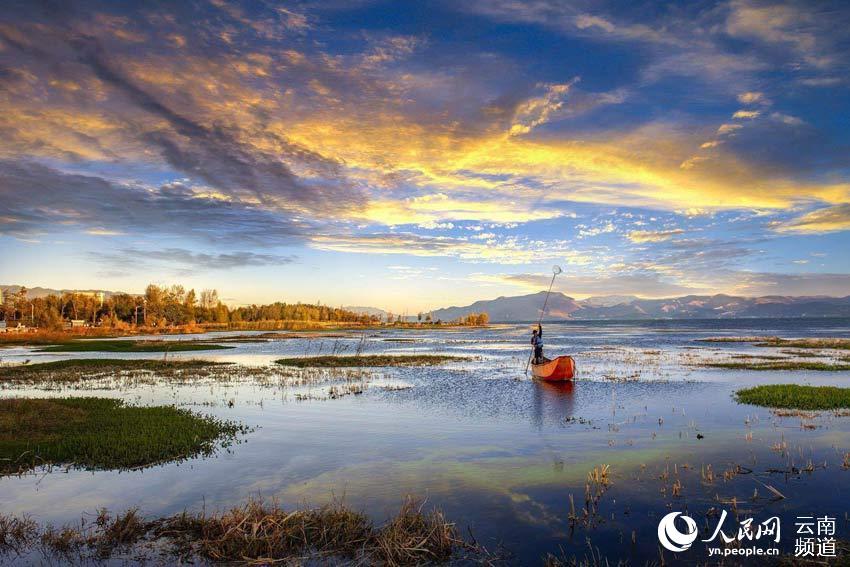 洱海湿地。摄影:杨继培