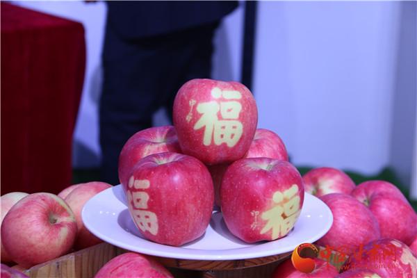 """平凉市崇信县举办庆祝第三届""""中国农民丰收节""""活动"""