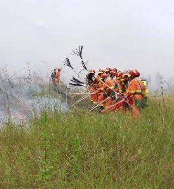 甘肃省开展打击森林草原违法用火行为专项行动