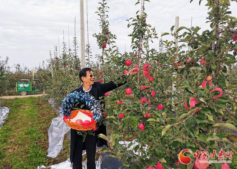 甘肃灵台乡村旅游采摘体验活动启动