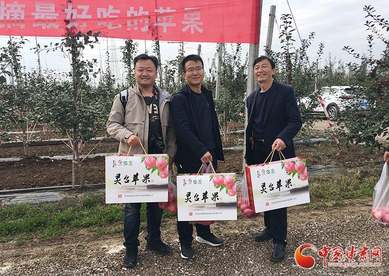 甘肃灵台乡村旅游采摘体验活动启