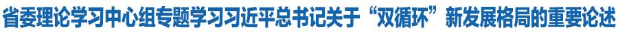 """甘肃省委理论学习中心组专题学习习近平总书记关于""""双循环""""新发展格局的重要论述 林铎唐仁健等出席"""
