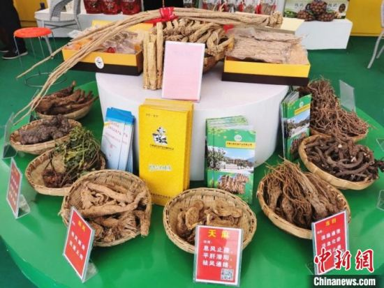 图为甘肃陇南市所产中药材。2020年前三季度,甘肃中药材产量预计同比增长7.6%。(资料图) 闫姣 摄