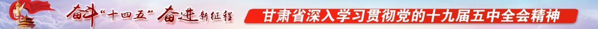 甘肃省深入学习贯彻党的十九届五中全会精神