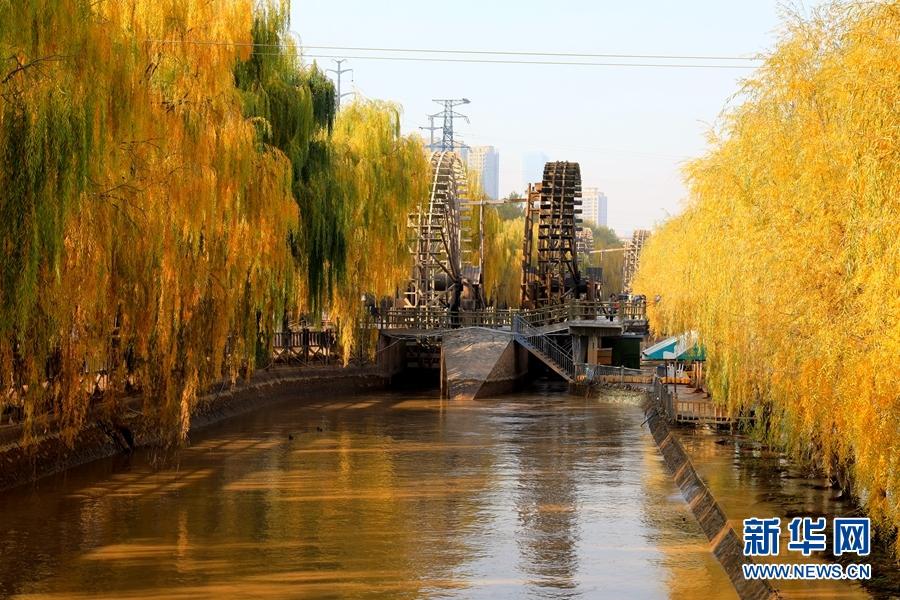 【大美甘肃】黄河之滨 水车之都