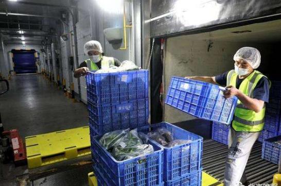 无相关证明快递企业不得收寄进口冷链食品