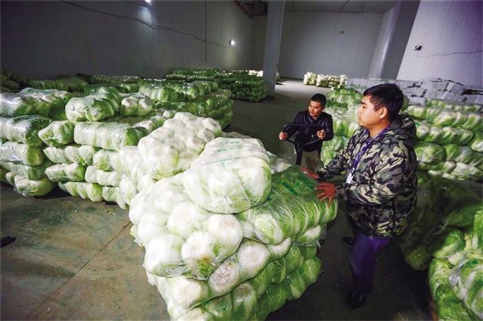 兰州市已储备1万吨冬春蔬菜 以耐贮存、易周转品种为主