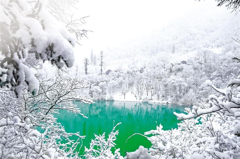 陇南冬春颜值高 康养观景两不误
