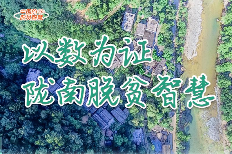 【中国的脱贫智慧】以数为证!陇南脱贫智慧来了!