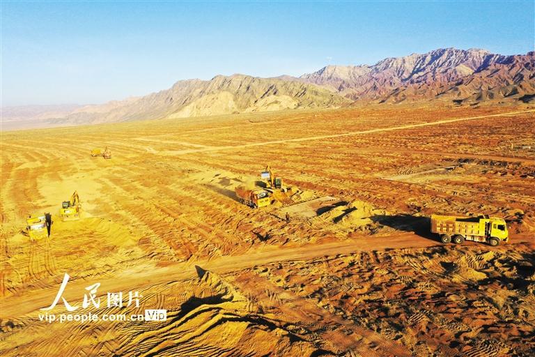 张掖甘州区元宝枫国家储备林建设项目加速推进