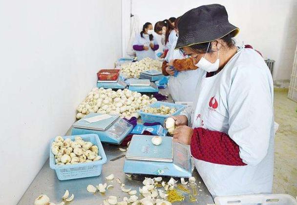 兰州榆中县市场监管局实行提前报备制度