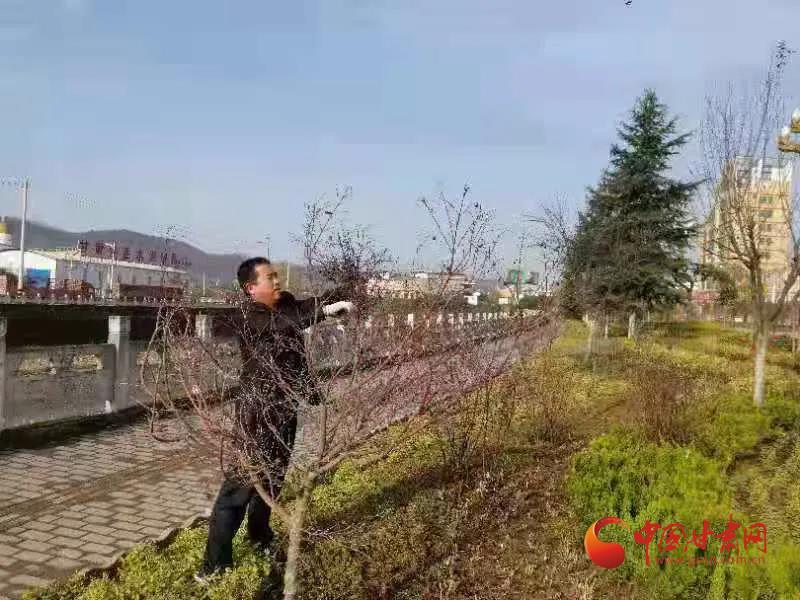 以平凡成就非凡——记徽县园林局综合管理股股长屈彦辉